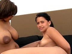 Horny and oiled lesbian action with big boobs