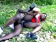 Afrikanska par i träet .