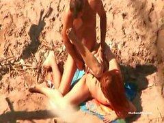 theSandfly Beach eccitazione!
