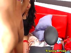 Два транссексуал детка играть и сосать друг к другу петух