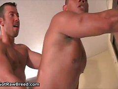 Rocco Martinez and Dominik Rider