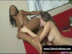 Zebra Girls - Ebony lesbian babes fuck deep strapon toys 02