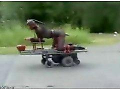 Riding vitun kone