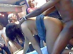 Party girls se déchaînent avec des décapants sexy