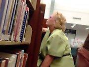 Schwänze Blitz Bibliothek
