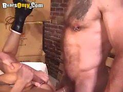 Deldirmiş Ayılar Sıcak Threesome