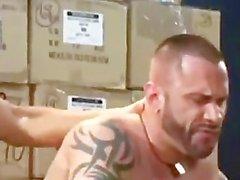 XXL God пола Antonio пород мускулистая ломоть