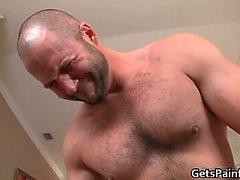 Capellute dell'orso gay richiederà gran gay part6 bianco