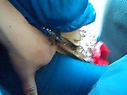 otobüse 1 de kedi reamed eşini dokunma
