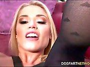 Ash Hollywood permite que você assista seu bichano Tome um galo preto