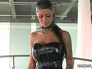 Angelinas Valentin av Dominans av Veronicas