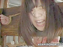 Азиатских суки имеет растущая и шлепающая BDSM сессию