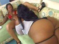 thick black lesbian orgy 2