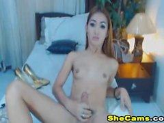Underbara Shemales Brud som masturberar på webbkamera