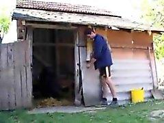 Farm rapaz fode com uma avó em seu burro