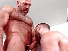Rimmed n drilled buff bear
