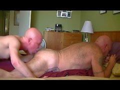 Pürüzsüz bir Dazlak tatted Babacık Bear besliyor
