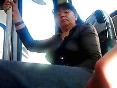 degli autobus