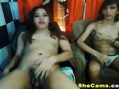 Två asiatiska Shemale Babe Hot Anal Sex