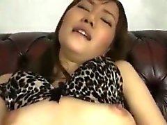 Nettes der heißen koreanischen Babe Banging