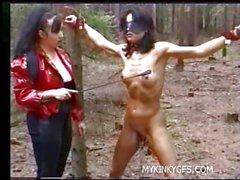 Hard госпожа Порно на лесу