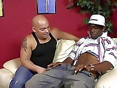 Chubby bald guy does decent deepthroat on a black