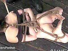 Brunette Hogtied and Foot Tortured