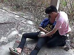 Cazzo fin il ladro telefonico