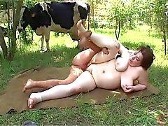 Tizio con Cowhead scopa il donna che cicciottello