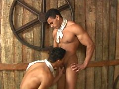 saddle up - Scene 3