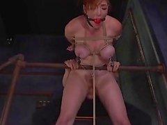 Slave Training Lauren Phillips