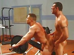 Muscle Men Gym Tittenfick
