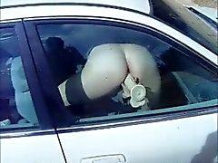 Dildoa auton ikkunan