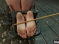 Ligoté et pleasured avec la torture