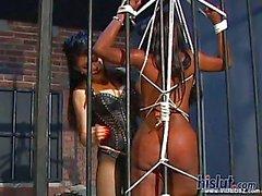 Bijan is a horny black girl