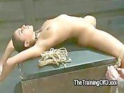 Brune super bonne attachée et de bloqué en position debout alors prévu sur la boîte défoncent à les pattes répandues