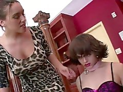 Dominatrix humiliates male slave