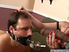 Shane Diesel cuckold humiliation