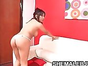 Vanesa Bystiga brunett Shemales suger fett Cock