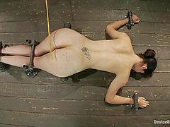 Bobbi Starr Recibe Golpeado Y Atornillado Por Una Máquina De Sexo En Escena SADOMASOCHISM
