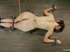 Бобби Стар Получает избит или резьбовые By A Sex Machine Кроме садомазохизм Scene