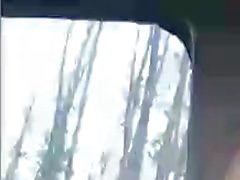 Sex im Wald, tiefer Oralsex im Auto, Hündchen
