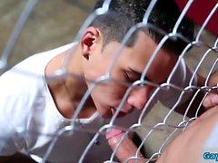 Latin homo anaali seksiä kasvojen