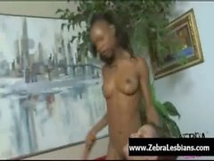 Zebra filles de - filles lesbiennes bénéficient d'ébène gode bordel profondeur 02