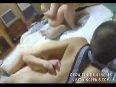 Orge Japanese Peloso cagne In quattro