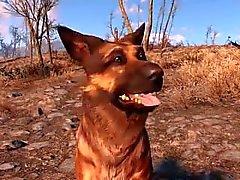 Fallout 4 Combat Compilación