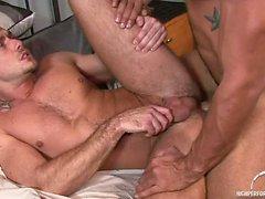 Jessie cuchilla del arado le encanta siendo aplastado en de su del novio a Trey