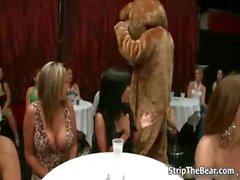 Роговой милашки сойти с ума трущихся медведем