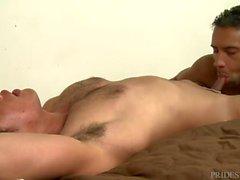 ExtraBigDicks Джей Александр Ест Ass и топы Hot Asian