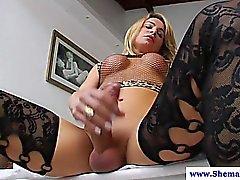 Atractivo de Shemale a Camille Andrade masturba
